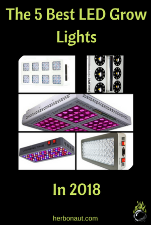 5 Best LED Grow Lights