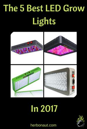 5 Best LED Grow Lights