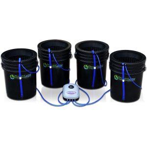 DWC 4 bubbler buckets