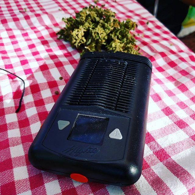 MIGHTY dry herb vaporizer