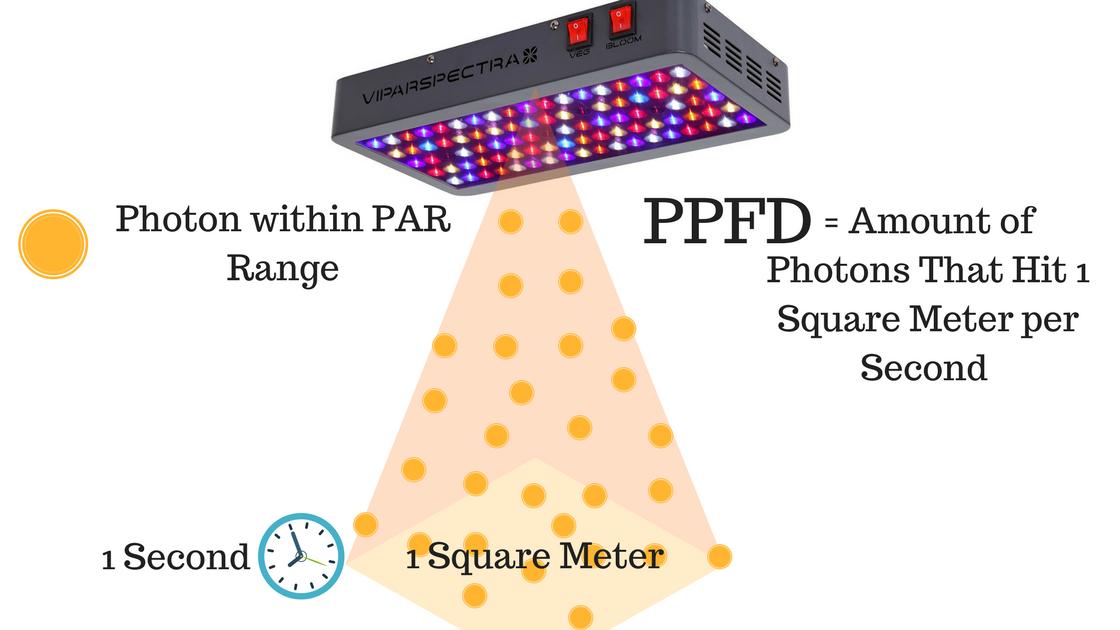 PPFD explained