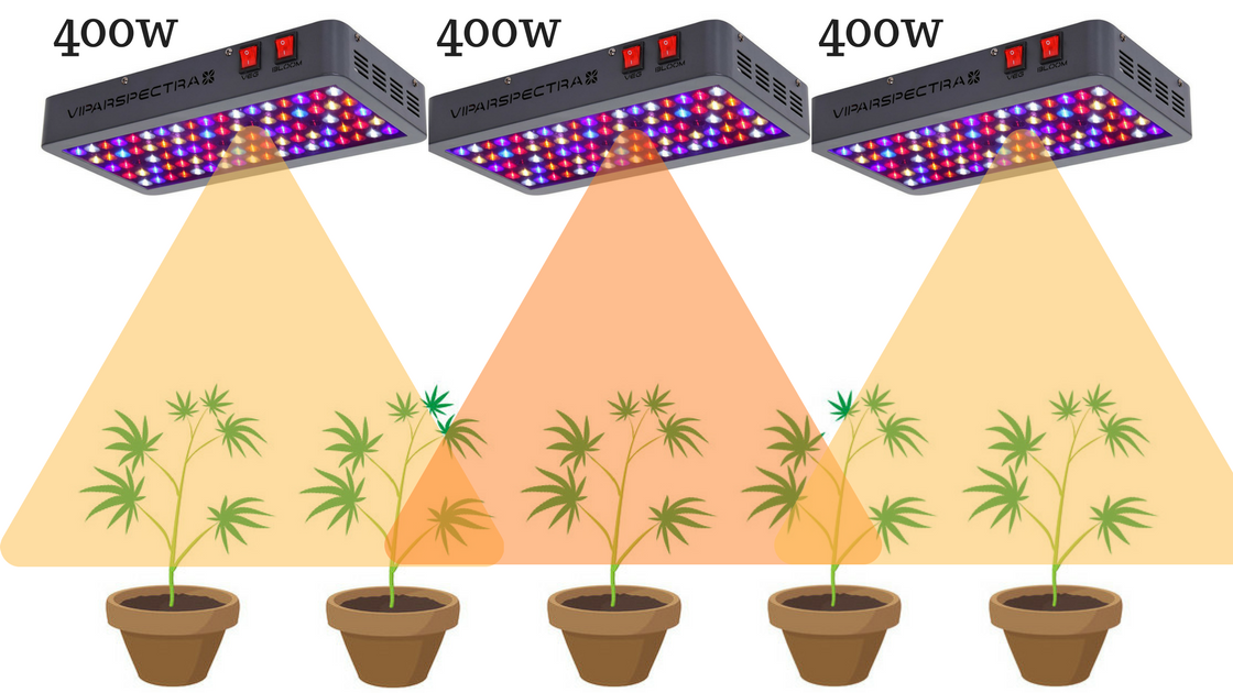 5 Best LED Grow Lights In 2019 [Based on Official PAR Values]