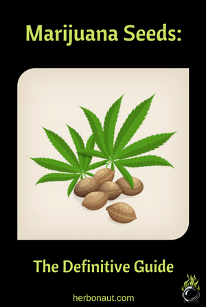 Marijuana Seeds Definitive Guide