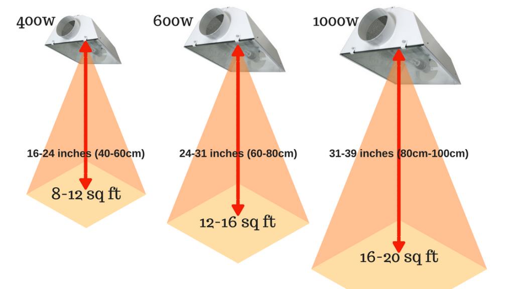 Watt Grow Light Distance From Plants Light Bulb Plant Grow Light Foodie Gardener Blog Aokey