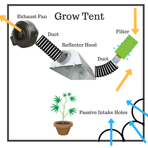 Set up HID- Filter - Duct - Hood - Duct - Fan  sc 1 st  Herbonaut & How to Set Up Your Grow Tent for an Effective (Marijuana) Grow