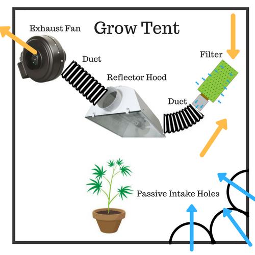 How to Set Up Your Grow Tent for an Effective (Marijuana) Grow