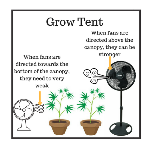 Setting up oscillating fans  sc 1 st  Herbonaut & How to Set Up Your Grow Tent for an Effective (Marijuana) Grow