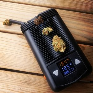 MIGHTY Vaporizer with Dry Herb