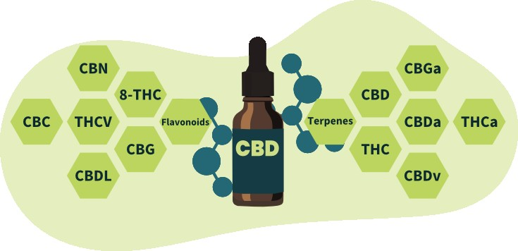 9 Surprising Uses of CBD Oil That You Wouldn't Have Guessed