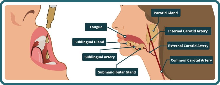 Sublingual ingestion
