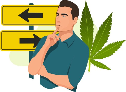 Acute Effects of Marijuana on Decision-Making