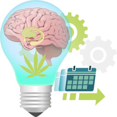 Effects of long-term marijuana use on cognition