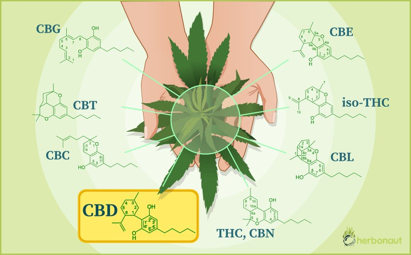 What-is-CBD-definition