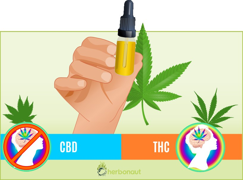 Difference CBD and THC