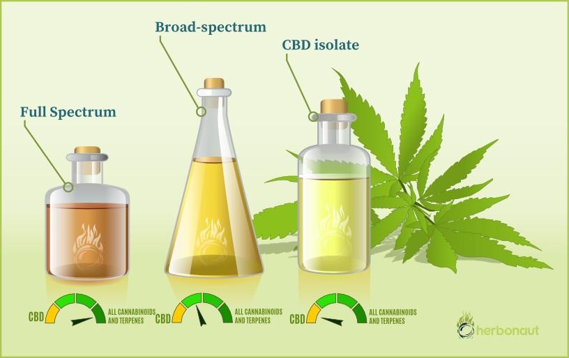 CBD Oil Types