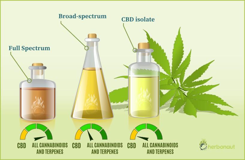 CBD Isolate vs full spectrum CBD oil