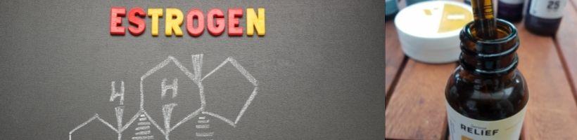 CBD and Estrogen